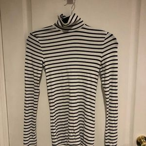 Aritzia Wilfred Only Turtleneck (Striped)